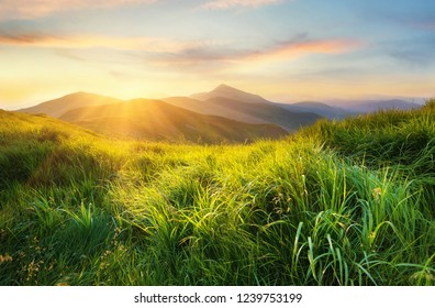 Mountain valley during sunset. Field with fresh grass and the mountain hills. Natural landscape at the summer time