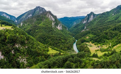 mountain valley, forest, Tara river canyon in Durmitor National Park, Montenegro