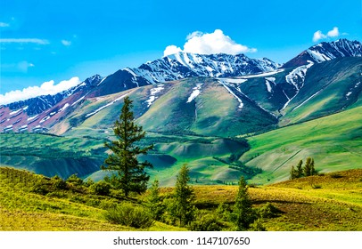 Mountain valley panoramic landscape. Mountain peak snow in mountain green valley panorama.