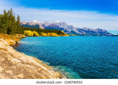 Mountain valley in the Rocky Mountains of Canada. Artificial Abraham lake reflects the golden foliage of aspen and birches. Concept of active, ecological and photo tourism