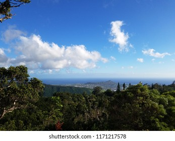 Mountain view of  city of Honolulu from Diamond head to Manoa with Kaimuki, Kahala, and oceanscape visible on Oahu on a nice day at from high in the mountains with tall trees in the foreground.