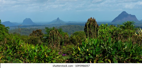 Mountain view of the Glass House Mountains Hinterlands in the afternoon.