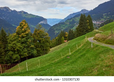 Mountain view with green meadows on the mountainsides near Wengen village in Switzerland.