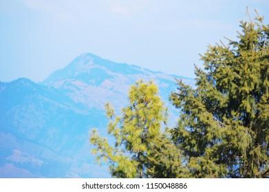 Mountain View in Shimla Kufri