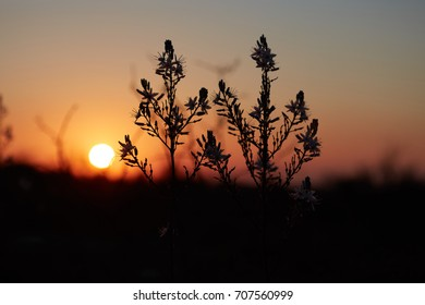 Mountain view at sunset time, Israel, Samaria