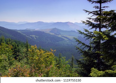 Mountain Views in Washington State