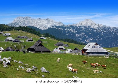 Mountain village in Alps, wooden houses in traditional style, Velika Planina, Slovenia, Europe