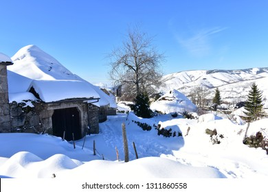 Mountain village with ancient palloza houses covered with snow. Snowy mountainside and spruces, blue sky, sunny day. Piornedo, Ancares, Lugo, Galicia, Spain.