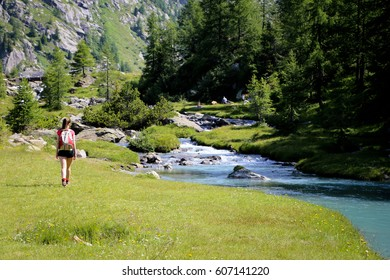 Mountain walking in a beautiful summer day