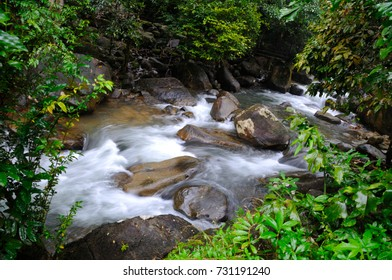 Mountain Water Cascading  Over Rocks