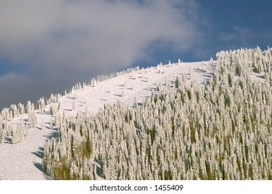 Mountain at winter, Steamboat ski resort, Colorado, United States
