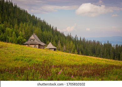 Mountain wooden rural cottage on a meadow in the mountains, a meadow with flowers, in the background a green forest and mountains, blue sky, Poland, Tatra Mountains