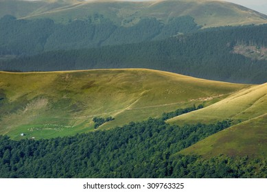 Mountain yellowed grass hills at the foot of the forest in the distance the ridges of Carpathians Europe