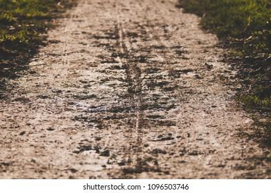 mountainbike tire tracks through a mud path