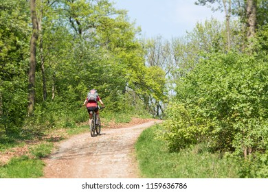 A mountainbiker from behind going uphill in the woods near Vienna, Austria