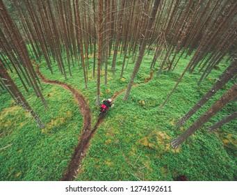 Mountainbiker in green forest