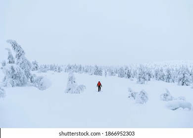 Mountaineer trekking in the snow at Lapland, Finland - Shutterstock ID 1866952303
