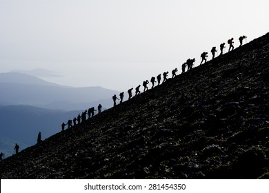 Mountaineering climbing group