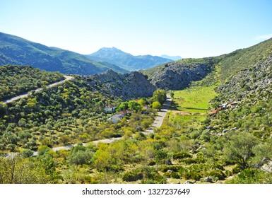 Mountainous landscape of the Serrania de Ronda near the village of Benaojan, Malaga province, Andalusia, Spain