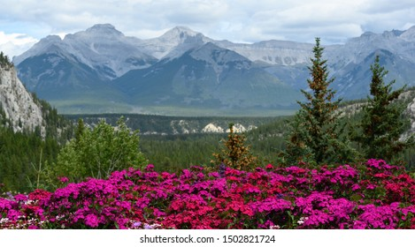 Mountainous Outdoors with beautiful views of the Canadian Rockies