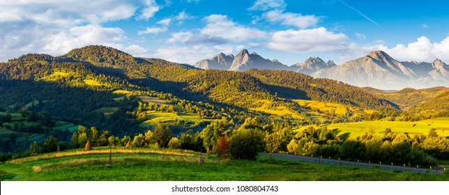 mountainous panorama of countryside at sunrise in summer. grassy fields in morning light. composite image with ridge of High Tatra rocky peaks in the distance under the blue sky with some clouds.