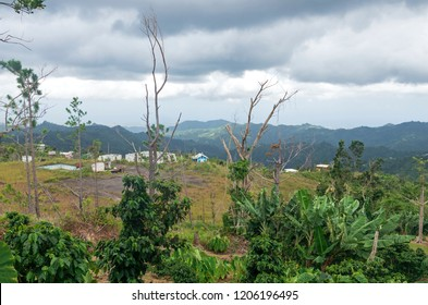mountainous region of puerto rico in foothills of cerro punta near jayuya overlooking small village