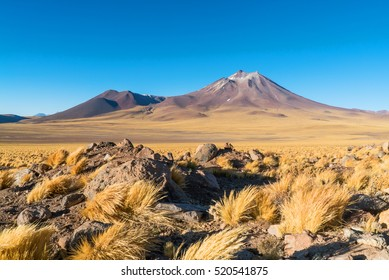 Mountains of the Altiplano on the border of Chile and Bolivia and yellow grass
