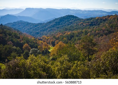 Mountains and autumn forest with oaks and pines between Osona an llucanes.