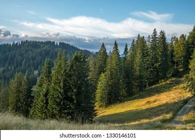 Mountains in Bavaria (German: Bayern Allgäu)