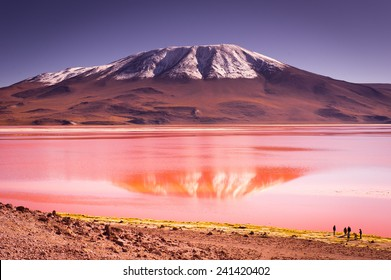 Mountains of Bolivia, altiplano, desert and green landscapes, trees and rocks, sand and water, sky and earth. Beautiful views of South America.