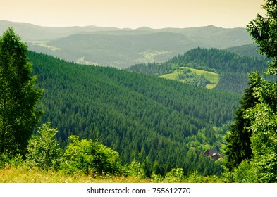 Mountains in the Carpathians in the summer.