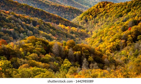 Mountains covered with hardwood trees showing autumn fall colors in the Great Smoky Mountains National Park, NC, North Carolina