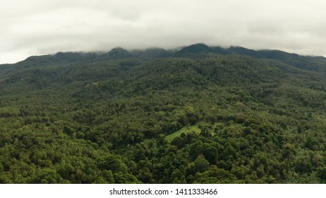 Mountains covered rainforest, trees in cloudy weather, aerial view. Camiguin, Philippines. Mountain landscape on tropical island with mountain peaks covered with forest. Slopes of mountains with