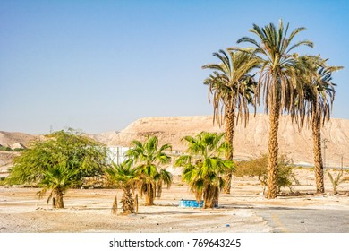 Mountains in the Desert of Negev, Israel.