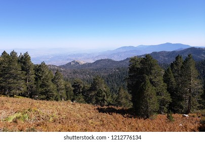 Mountains and deserts viewed from an alpine meadow, California