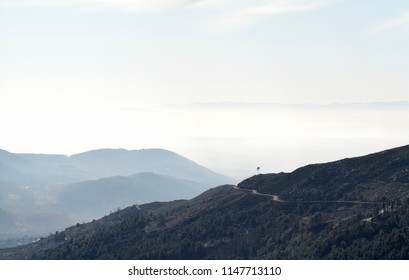 Mountains in the distance with fog and clouds and a lone tree on the top