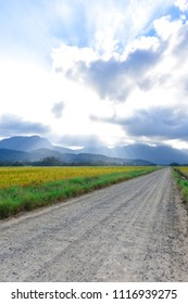 Mountains at the end of the afternoon at the Rice Highway in Joinville, Santa Catarina - Brazil
