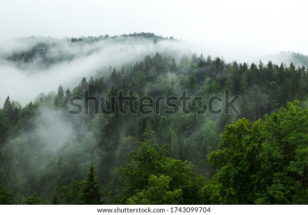 Mountains with fog. Alps in southern Germany