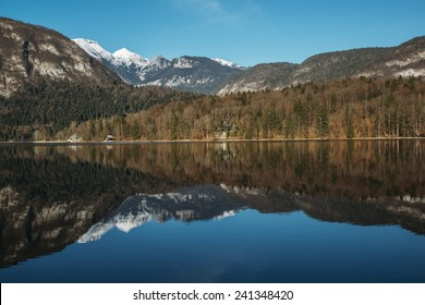 Mountains and Forest reflection in the Lake. Clear sky is over the lake covering the forest and sun rays are penetrating through. Scenic and atmospheric sunrise at Bohinj in Slovenia.