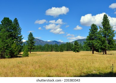 Mountains and forests of Montana near Glacier National Park in Summer