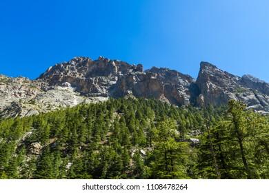 Mountains in the Gangotri valley in Uttarakhand ,India.