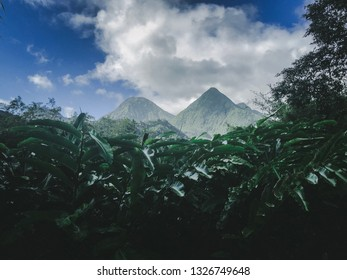 Mountains in the jungle, Martinique