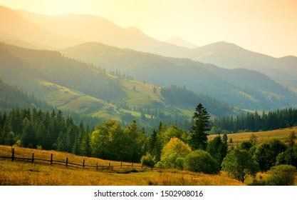 Mountains landscape with mountains range and trees, Carpathians, Ukraine, Europe