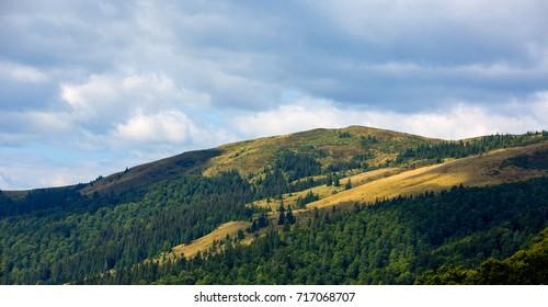 mountains landscape in ukrainian Carpathians
