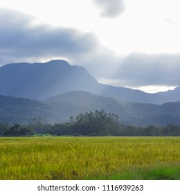 Mountains in the late afternoon sun between clouds, at the Rice Highway in Joinville, Santa Catarina - Brazil