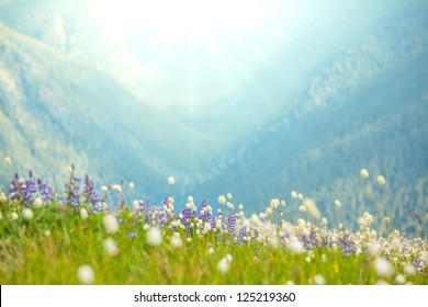 mountains meadow at sunrise