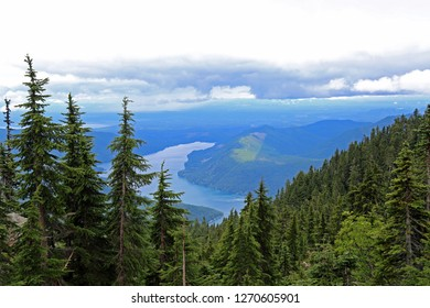 Mountains - Olympic National Park