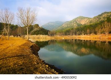 Mountains river  in winter day.  Muga, Catalan Pyrenees. Spain
