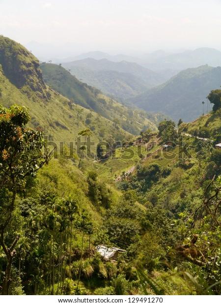 The mountains round the Ella Cap in Sri Lanka