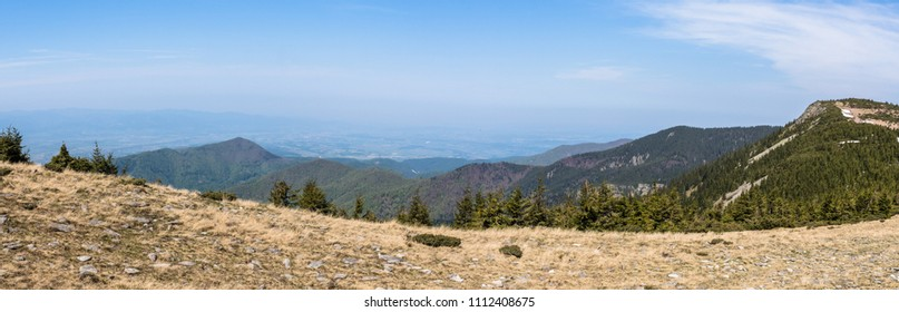 Mountains in spring